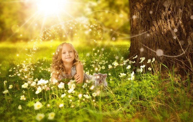 Cats and young children : the secrets of successfully living together